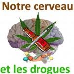 1b Image Notre cerveau et les drogues.1